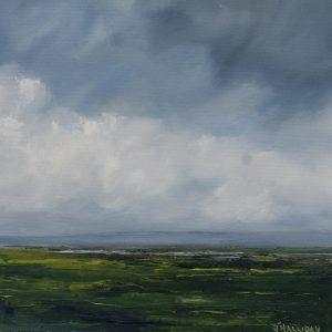 Lough Light, Irish Landscape