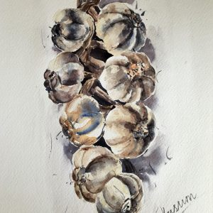 A watercolour painting of a bunch of garlic done in very few colours ideal for kitchen art.